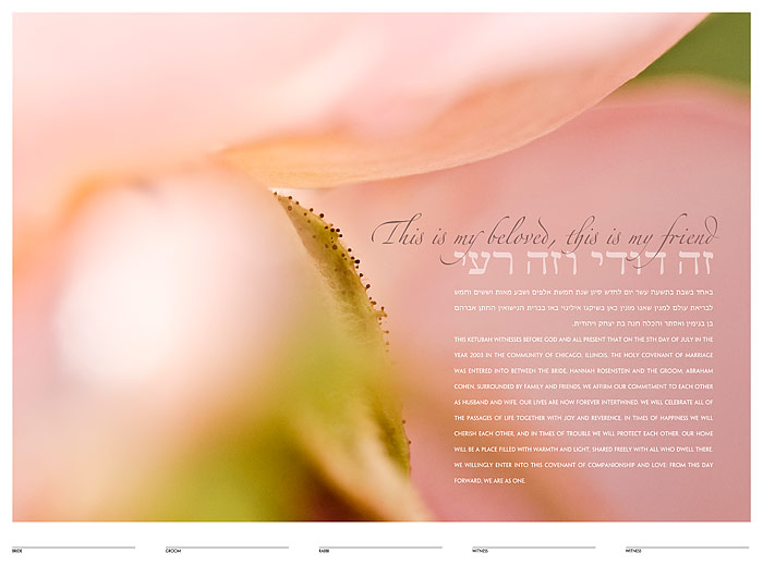 The Blush Ketubah: a fine art ketubah created by Daniel Sroka of ModernKetubah.com for couples of all faiths and cultures.
