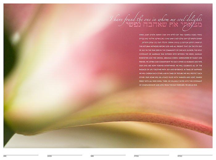 The Stargazer Lily Ketubah: a fine art ketubah created by Daniel Sroka of ModernKetubah.com for couples of all faiths and cultures.
