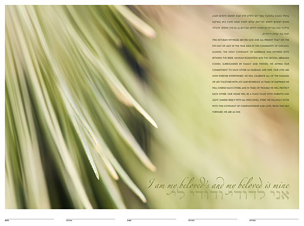 Evergreen ketubah by Daniel Sroka