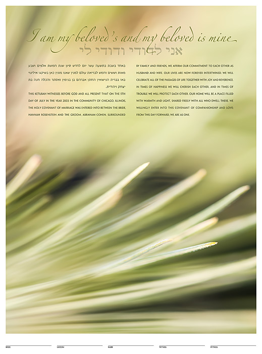 The Evergreen Ketubah: a fine art ketubah created by Daniel Sroka of ModernKetubah.com for couples of all faiths and cultures.