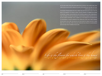 The Sun Daisy fine art ketubah by Daniel Sroka