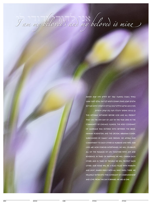 The African Lily Ketubah: a fine art ketubah created by Daniel Sroka of ModernKetubah.com for couples of all faiths and cultures.